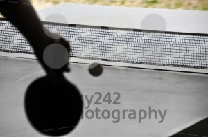 Ping-pong-8211-table-tennis-net1