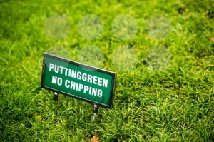 Putting green at the golf course - franky242 photography