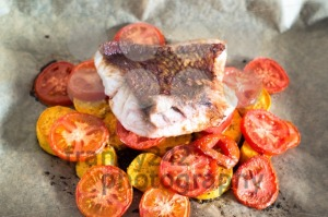 Red-Snapper-Filet1