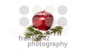 Red apple with fir branches in snow - franky242 photography