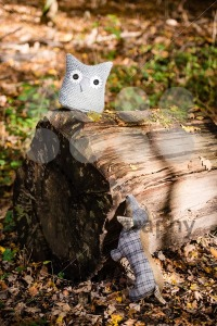 Soft toy dog is chasing an owl in autumn forest - franky242 photography