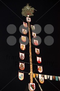 Tree symbolizing the groups participating at carnival - franky242 photography