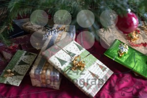 Under the Christmas tree - franky242 photography