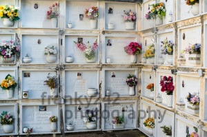 Wall departments, detail of graves in Italian cemetery - franky242 photography