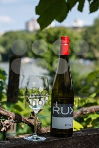 White wine glass on wooden table against vineyard in summer - franky242 photography