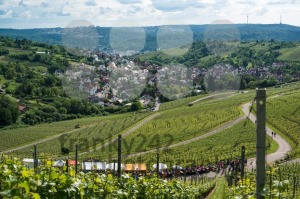 Wine-Tour-in-Uhlbach-near-Stuttgart-Germany