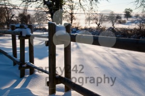 Winter Snow Scene - franky242 photography