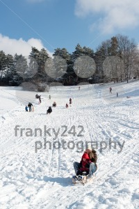 Winter fun - franky242 photography