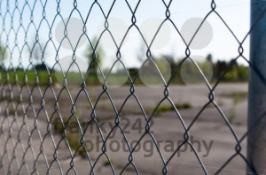 Wire Mesh - franky242 photography