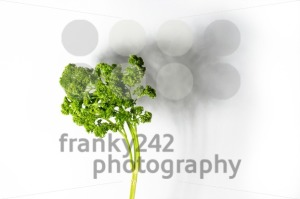 abstract-parsley