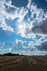 cloudy sky and golden field after harvesting - franky242 photography