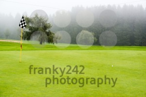 golf ball on green - franky242 photography