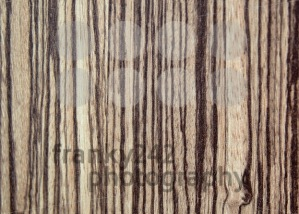 tree-wood-textured-background