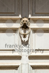 Door knocker, handle –  lion head - franky242 photography