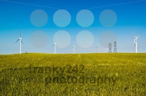 Wind turbines - franky242 photography