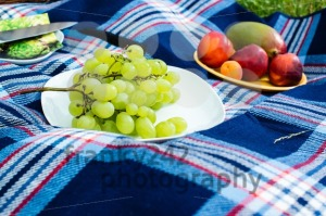 Picnic blanket - franky242 photography