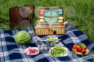 Picnic blanket and basket - franky242 photography