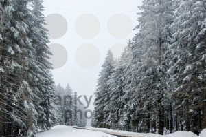 Car driving on winter road  - franky242 photography