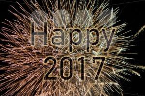 Happy New Year 2017 - franky242 photography