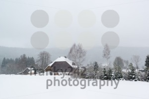 Typical black forest houses - franky242 photography