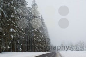 Wet winter road  - franky242 photography