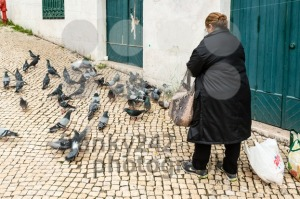 Old woman feeding pigeons  - franky242 photography