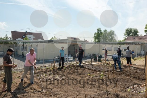 Gardening activities in a German refugee camp - franky242 photography