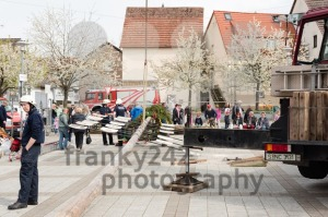 Traditional maypole being set up  - franky242 photography