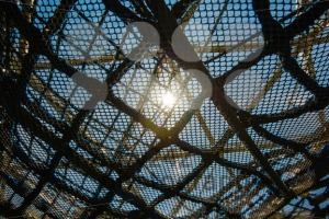 abstract net texture against sunlight - franky242 photography