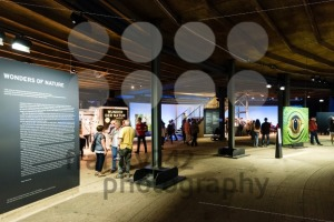 Wonders of the Earth exhibition - franky242 photography