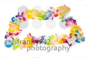 Colorful Hawaiian Flower Necklace - franky242 photography