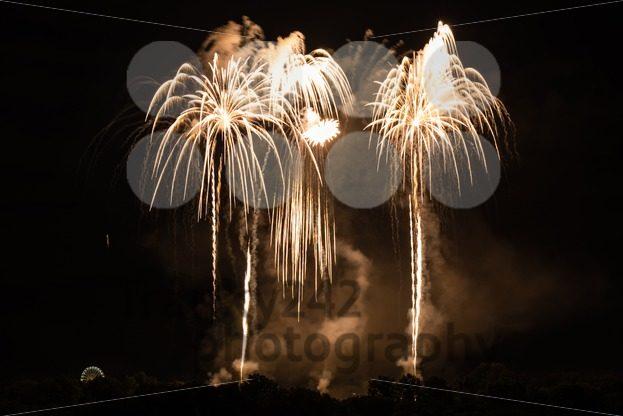 Huge Golden Fireworks - franky242 photography