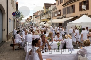 Le Diner En Blanc - the white dinner - franky242 photography