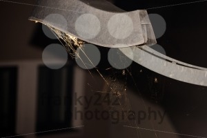 Trapped - spider webs under streetlight - franky242 photography