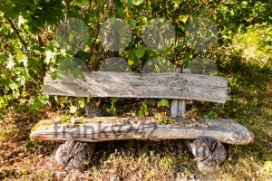 old wooden bench in forest - franky242 photography