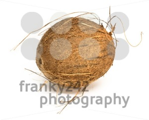 coconut on white background - franky242 photography