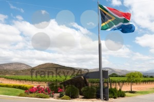South African winery - franky242 photography