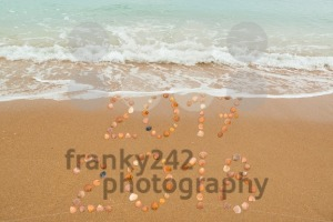 Happy New Year 2018 - franky242 photography