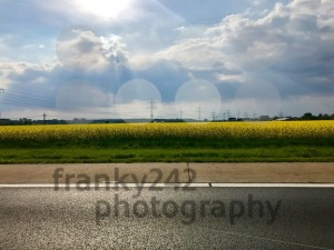 Road close to rapeseed field - franky242 photography