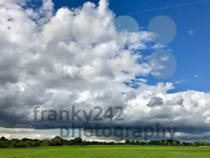 autumn grass and sky - franky242 photography