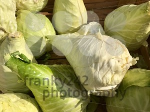 Pile of fresh white cabbage at farmers market - franky242 photography