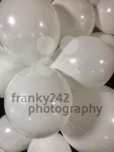 Numerous white balloons - franky242 photography