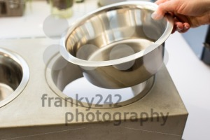 Woman preparing dog food bowl - franky242 photography