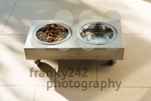 Stylish cat food bowl - franky242 photography