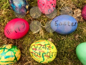 Happy Easter - Colourful Easter eggs in green moss. - franky242 photography