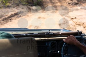 Safari guide driving with his rifle in the bush of South Africa - franky242 photography