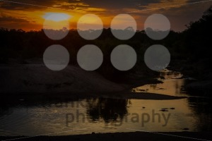 Beautiful sunset with hippos in the river - franky242 photography