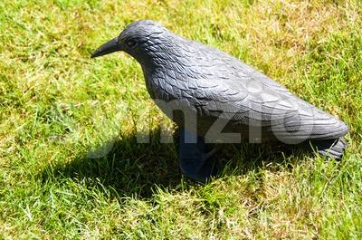 Plastic Bird Stock Photo