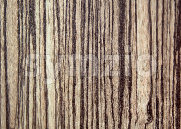 tree wood textured background Stock Photo