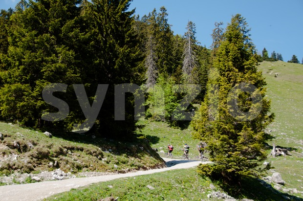 Mountain Bike Riders Stock Photo